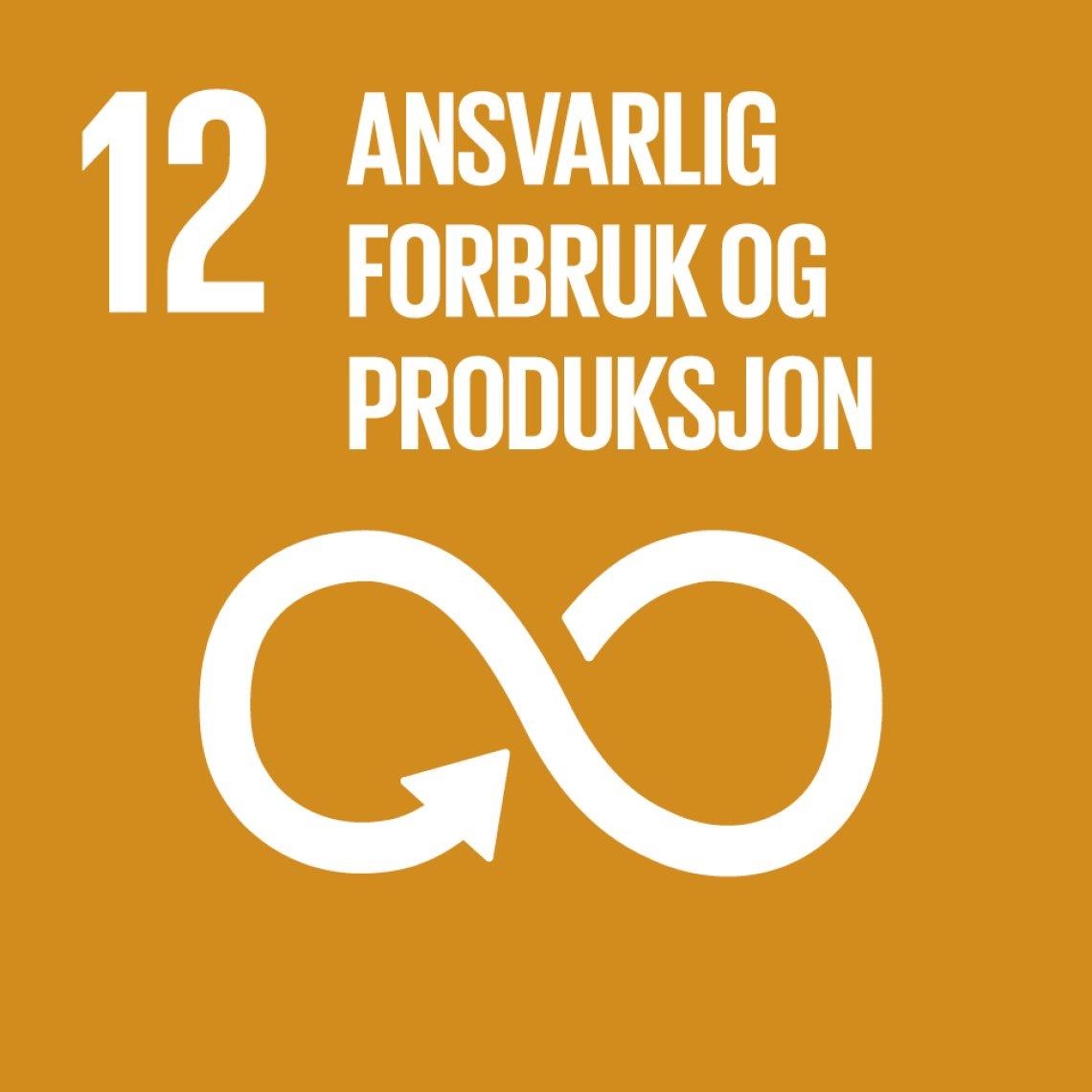Bilderesultater for fn bærekraftsmål 12